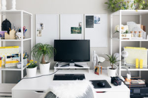 All white working area filled with green plants