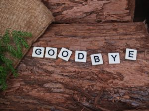 """Letter cubs spelling the word """"goodbye"""""""