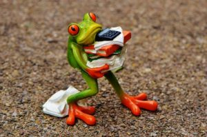 Can you pack for moving without stress - figure of the frog holding books