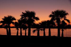 Ocean Beach is a great San Diego neighborhood to live in