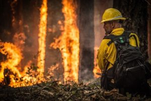 A firefighter in a wildfire.