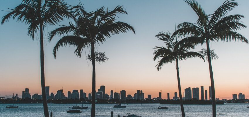 Moving from coast to coast: leaving San Diego for Miami