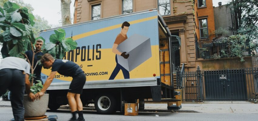 Can movers help with something else besides moving?